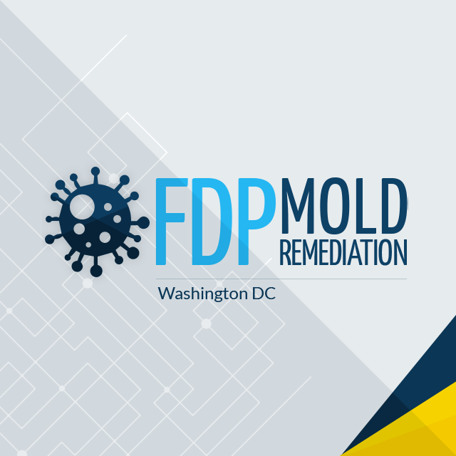 Since The Day Fdp Mold Remediation Opened For Business They Have Strived To Offer Their Customers Only Best And Most Effective