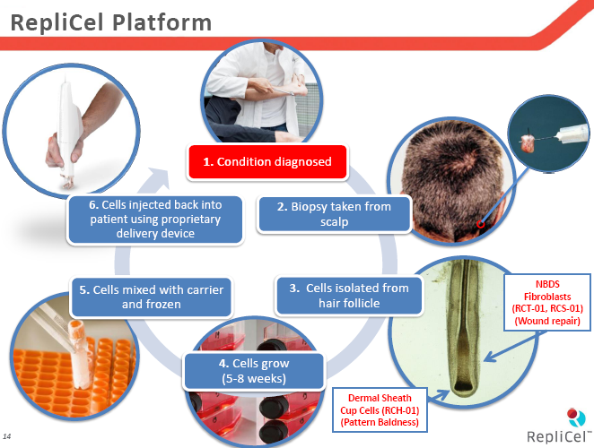 RepliCel Life Sciences, A Leader in the Multi-Billion Dollar