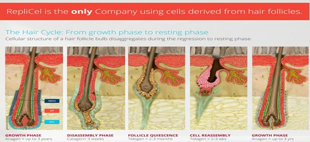 A Highly Disruptive Regenerative Medicine Company - RepliCel
